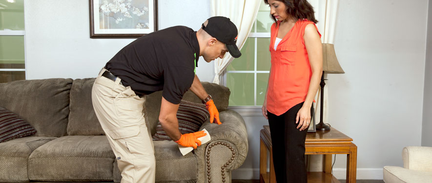 Amityville, NY carpet upholstery cleaning